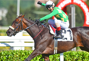 Winner of 93rd Gazi Derby is THE LAST ROMANCE