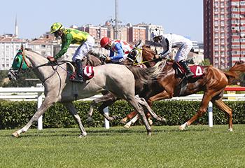 Abdurrahman Atçı Koşusu'nu Gülhatmi kazandı