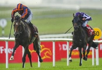 AUTHORIZED Representative SANTIAGO's Triumph in Irish Derby