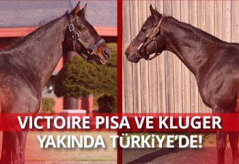 VICTOIRE PISA ve KLUGER yakında Türkiye'de!