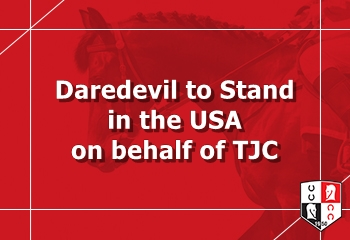 Daredevil to Stand in the USA on behalf of TJC