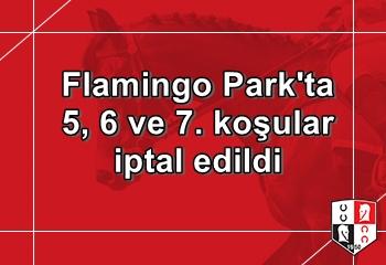 Flamingo Park yarışlarında 5, 6 ve 7. koşular iptal edildi