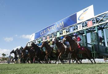 29 Mayıs Cuma günü ABD Gulfstream Park yarışlarına bahis oynanabilecek