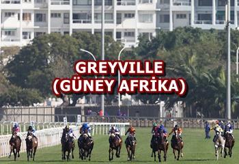 4 Aralık Cuma Güney Afrika Greyville yarış programı ve erken bahis oranları belli oldu