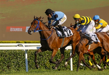 Victory Goes to Prior at the 65th Turkish Oaks
