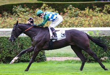 Normandy Bridge Wins Prix Thomas Bryon Jockey Club de Turquie