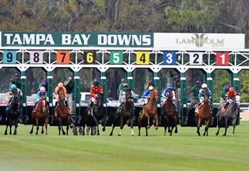 27 Mayıs Çarşamba günü ABD Tampa Bay yarış programı ve erken bahis oranları belli oldu