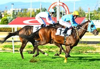 Bursa'daki A3 koşuyu Halaf Ağa kazandı