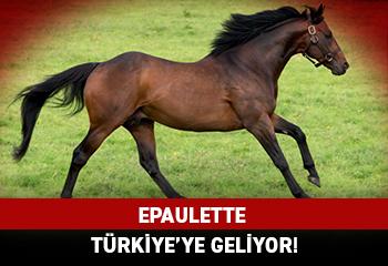 EPAULETTE Türkiye'ye geliyor!