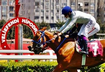Kadir Keçelioğlu Koşusu'nu Raving Moon kazandı