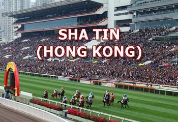 24 Ekim Pazar Sha Tin yarış programı ve erken bahis oranları belli oldu