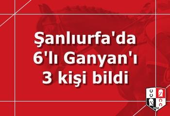 Şanlıurfa'da 6'lı Ganyan'ı 3 kişi bildi